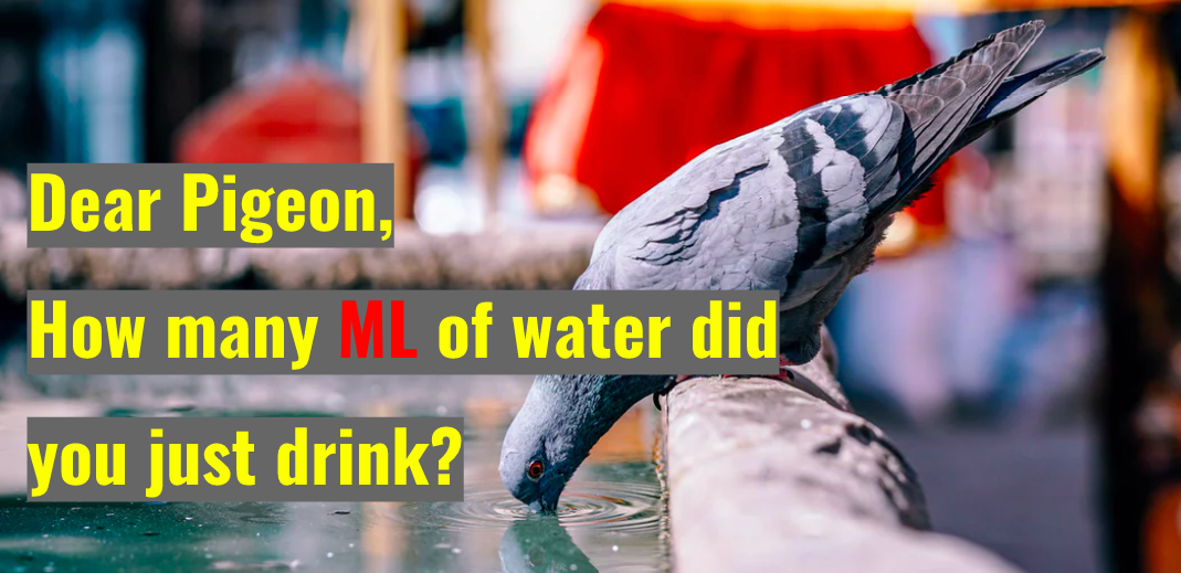 Drink some water — apps and chatbots - Becoming Human