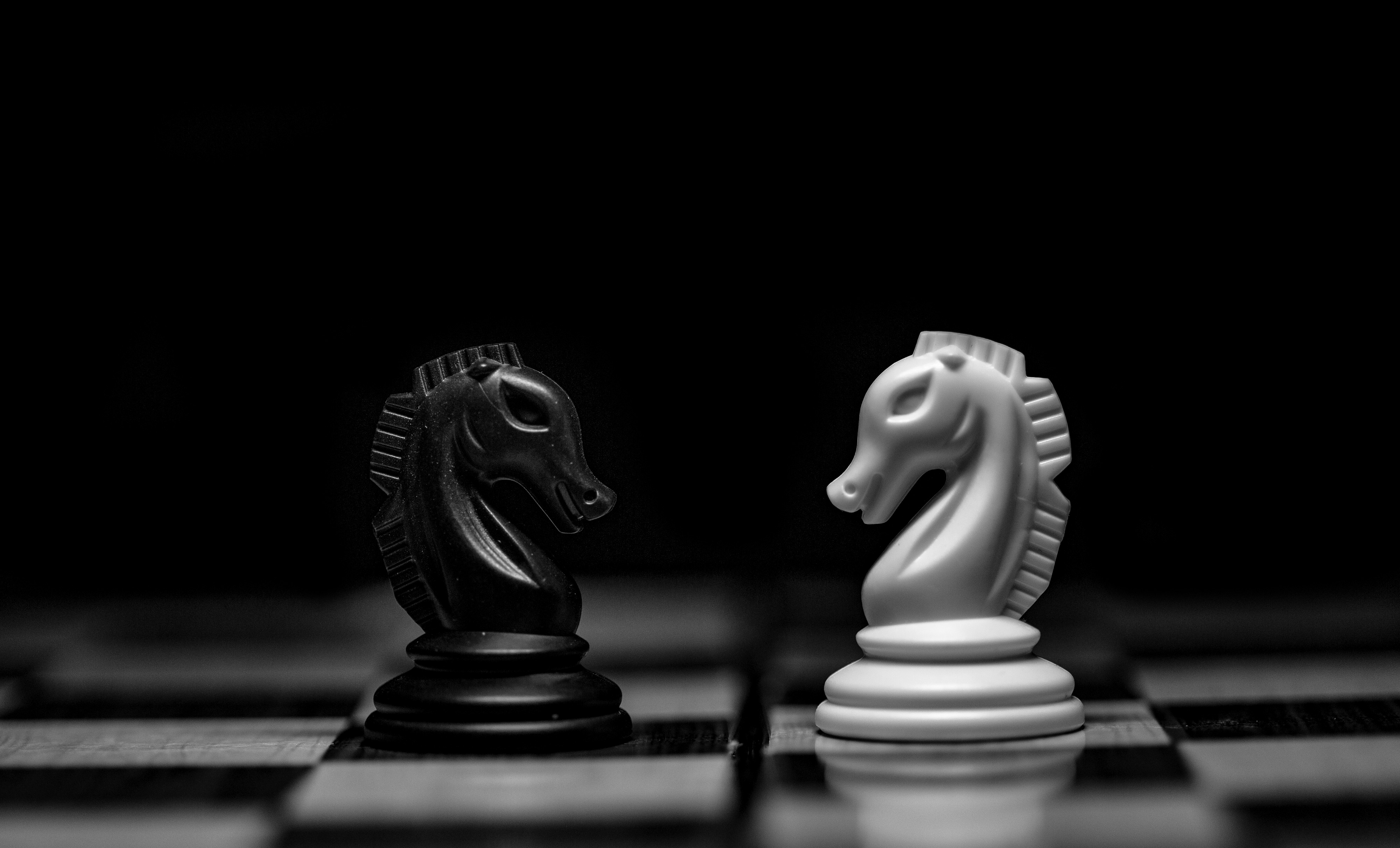 Two chess knights opposing each other (black and white)