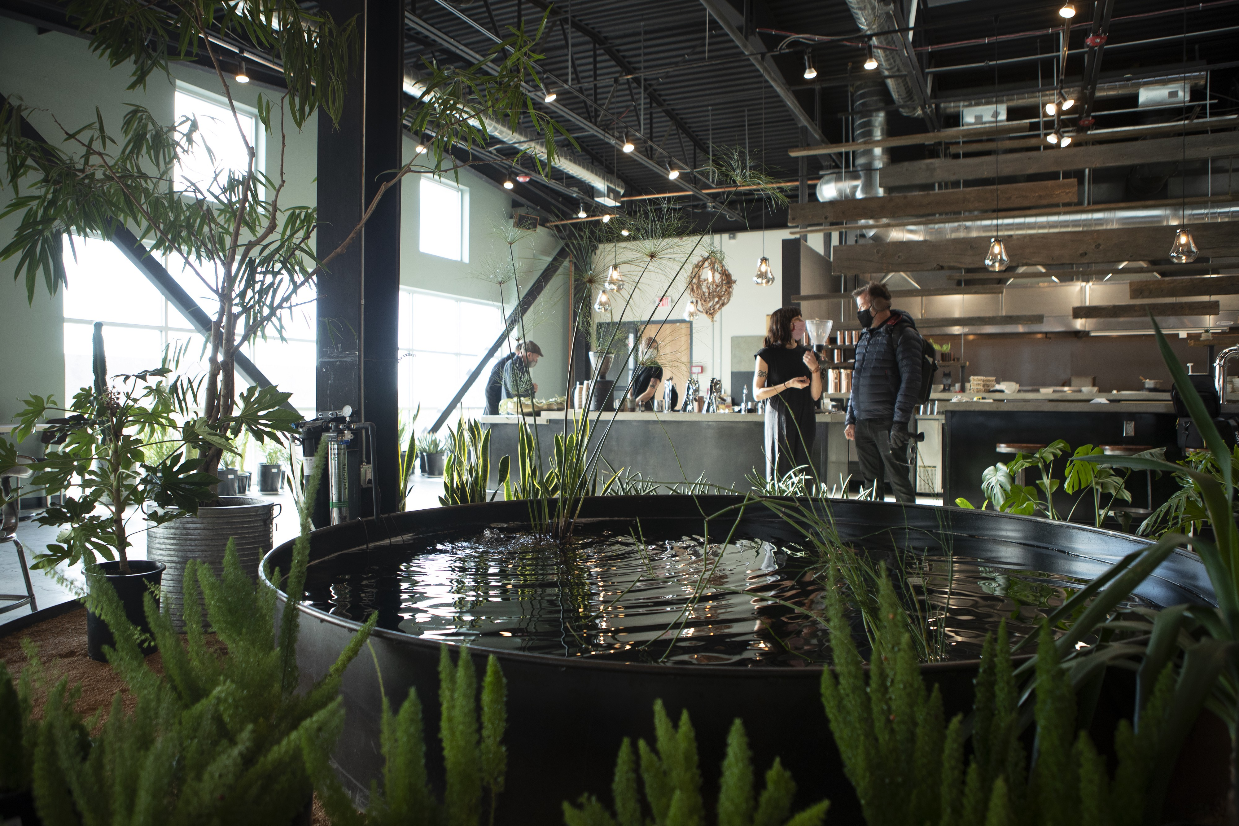 A few masked people surround a counter to order food. A big koi pond is in the forefront surrounded by tropical and desert plants