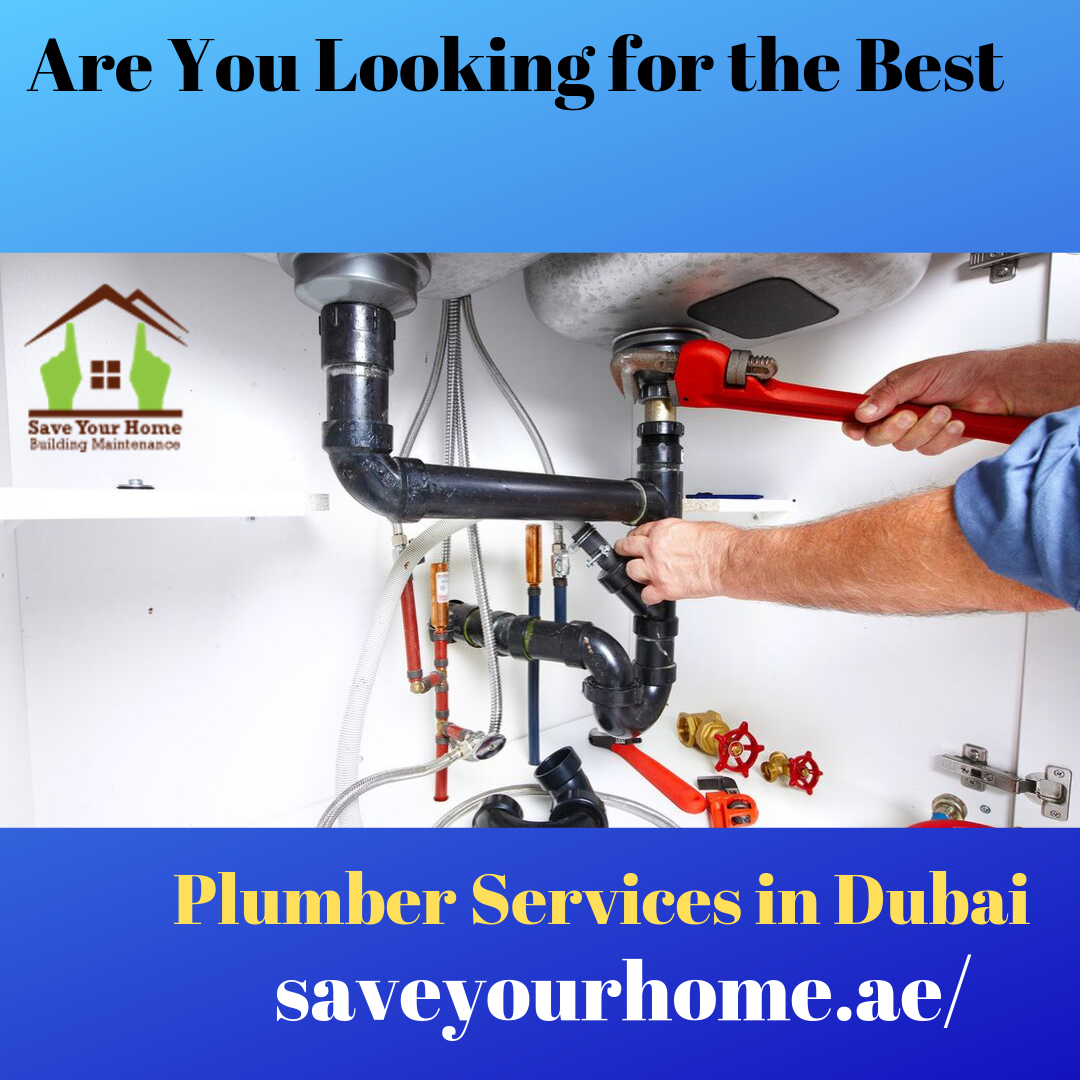 What You Should Know About Professional Plumber Services