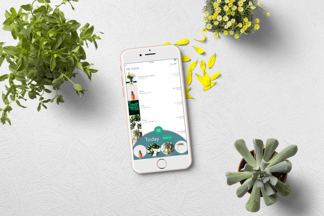 Saving my plants with a plant watering app — a UX case study
