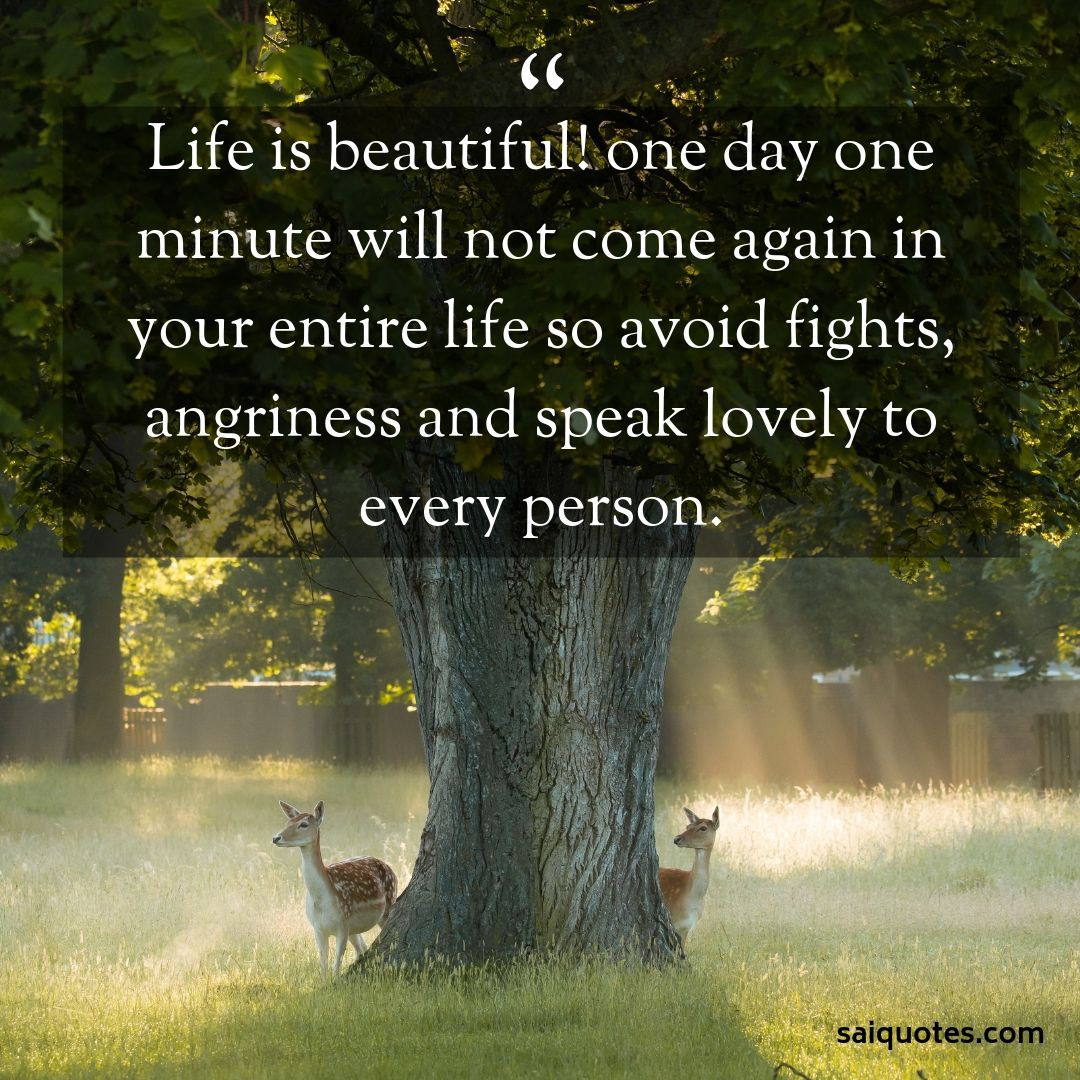 Life Is Beautiful Quotes Hello Friends Nice To Meet You I M By Sai Quotes Medium