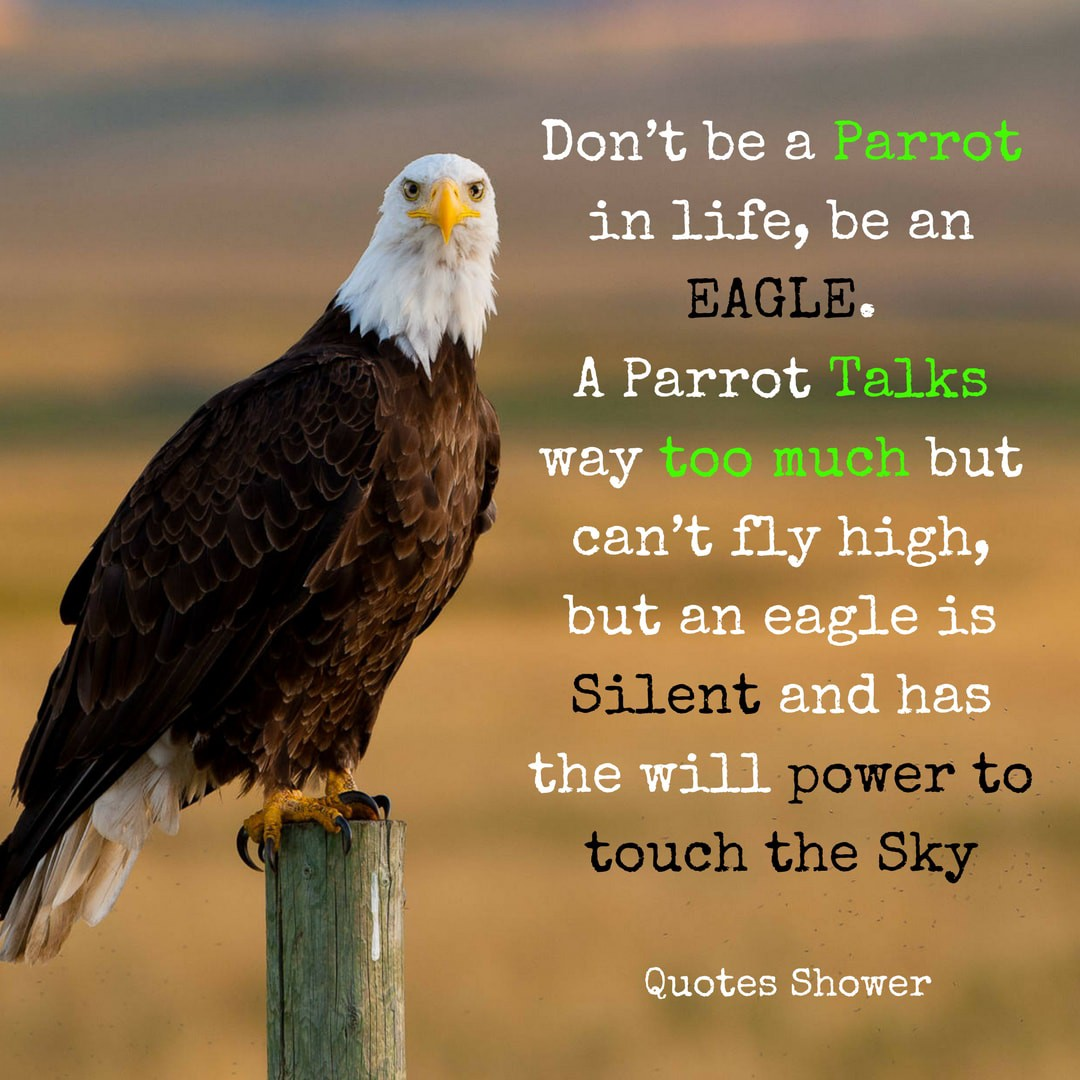 Motivational Life Quotes Don T Be A Parrot In Life Be An Eagle By Quotes Shower Medium