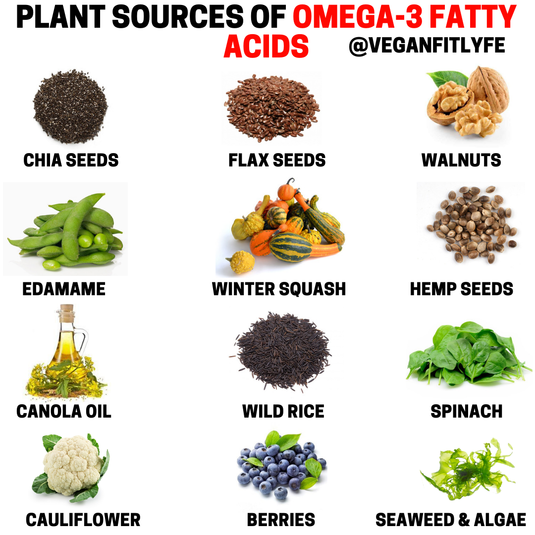 Plant Sources Of Omega 3