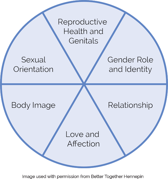 A pie graph that shows different parts of sexuality: health, gender, sexual orientation, body image, love and relationships.