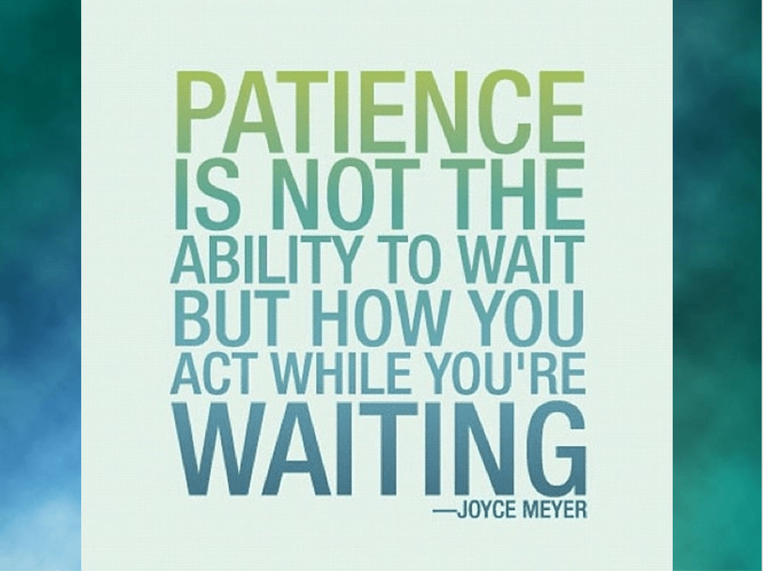 Patience is a virtue. If there was one theme that dominated… | by Jennifer  Cross | It's Your Turn