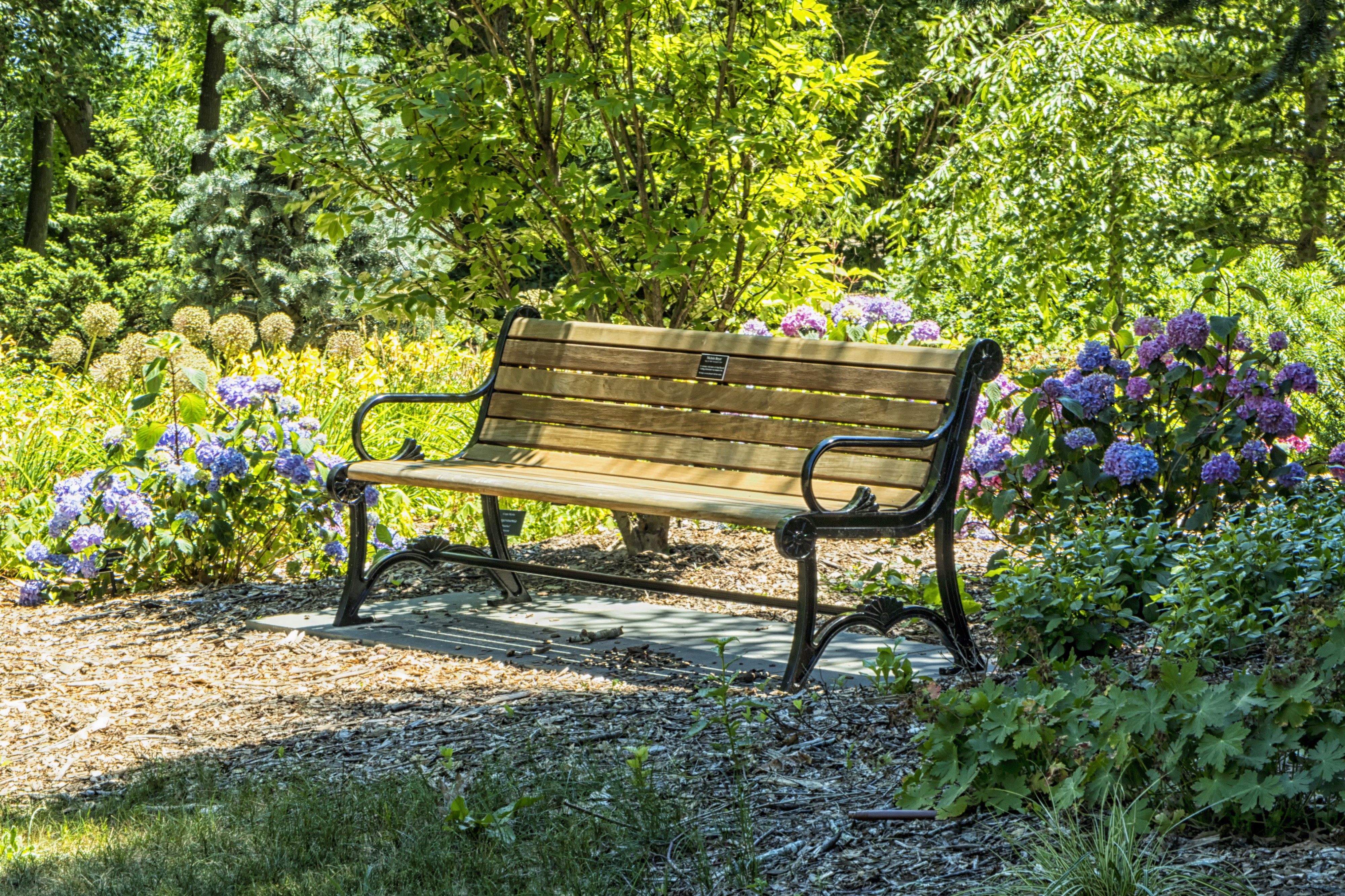 Fantastic Grief And Another Way Of Seeing Noteworthy The Journal Blog Ibusinesslaw Wood Chair Design Ideas Ibusinesslaworg