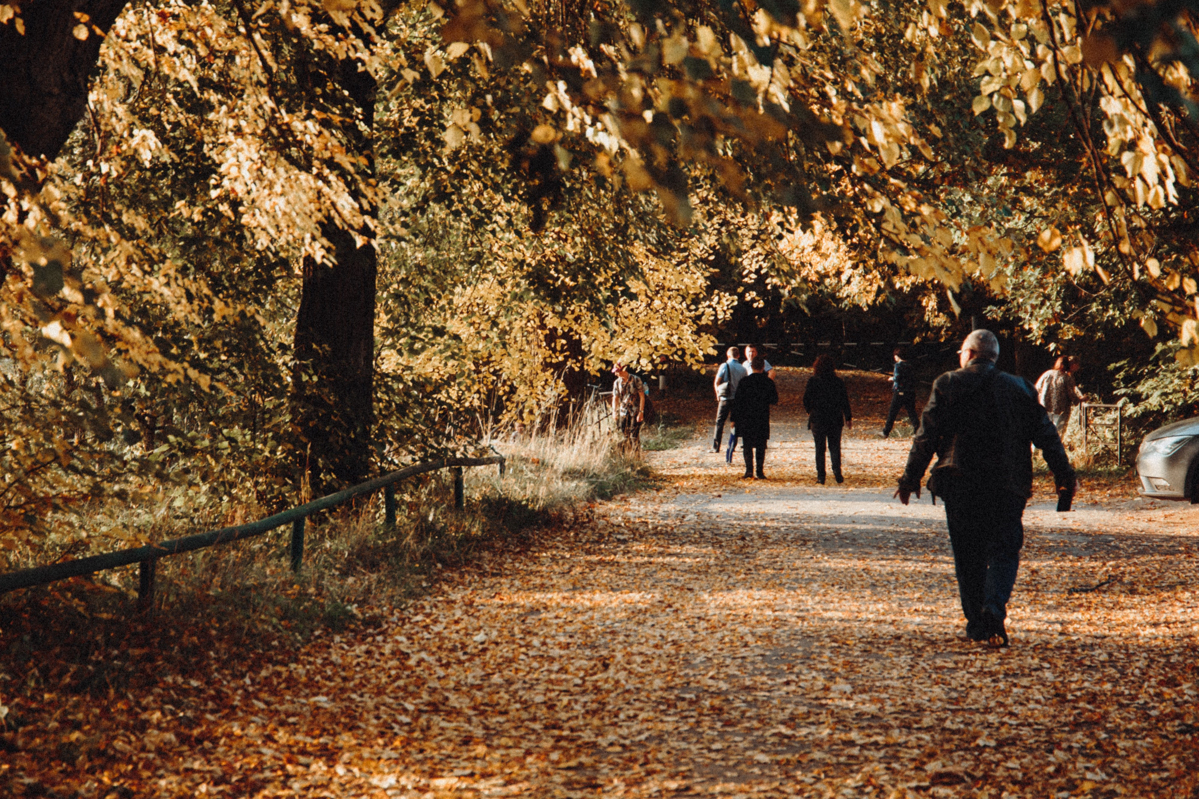 People out for a walk on a tree lined street in Autumn.