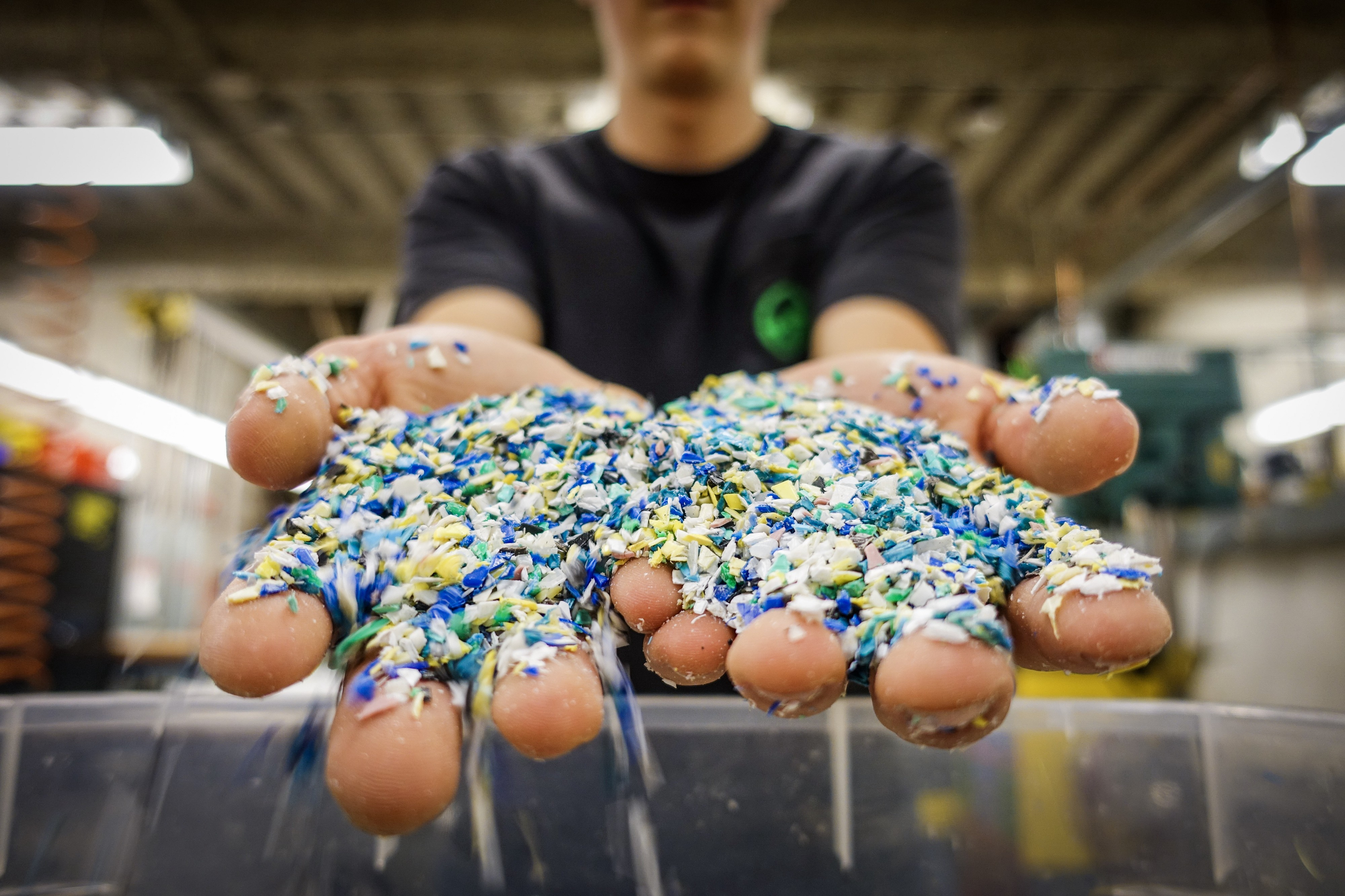 Ground up plastics in the hands of a WWU student