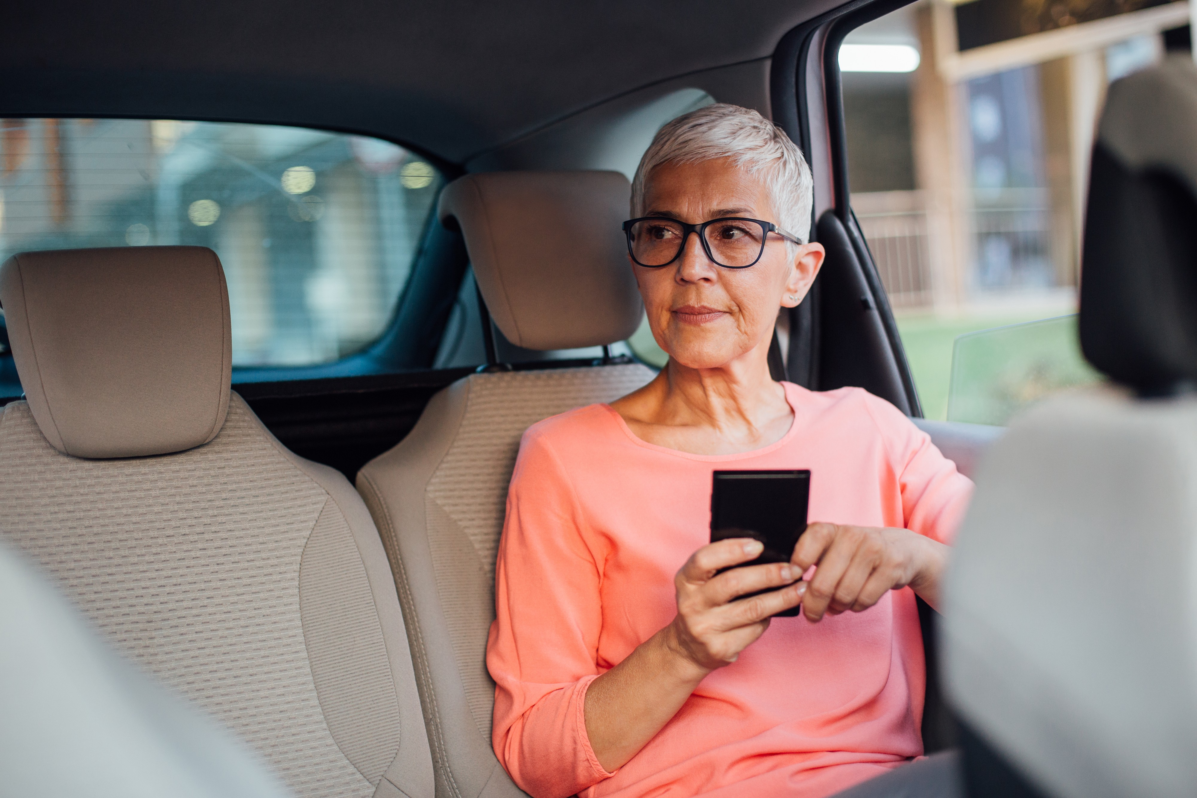 horthair businesswoman sitting on the back seat