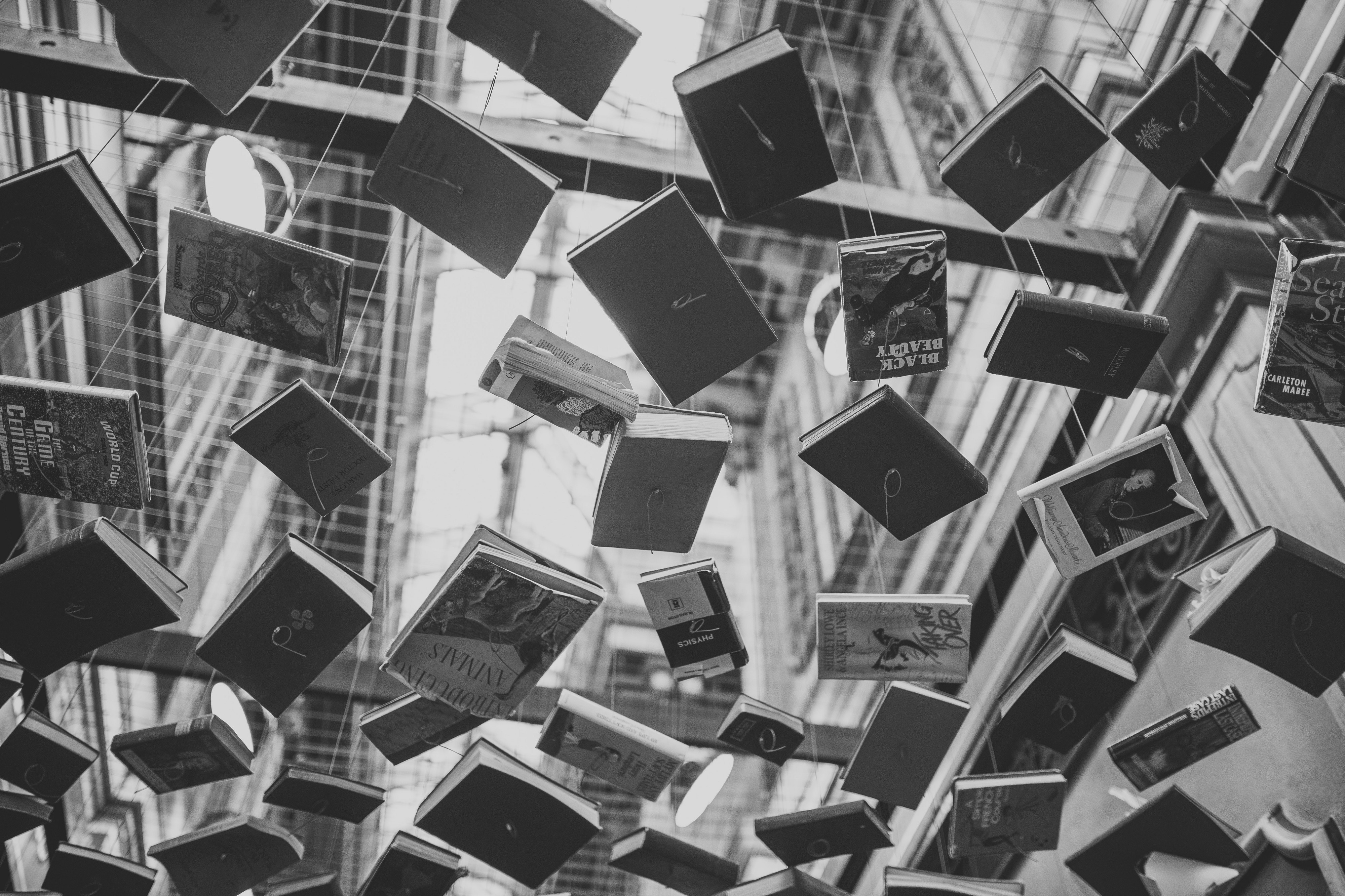 Dozens of books hanging from the ceiling.