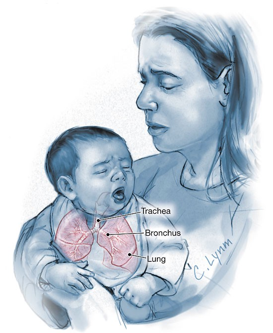 More Evidence Showing Pertussis Vaccination For Pregnant Women Is Safe &  Effective | by Dr. Melvin Sanicas | Healthcare in America