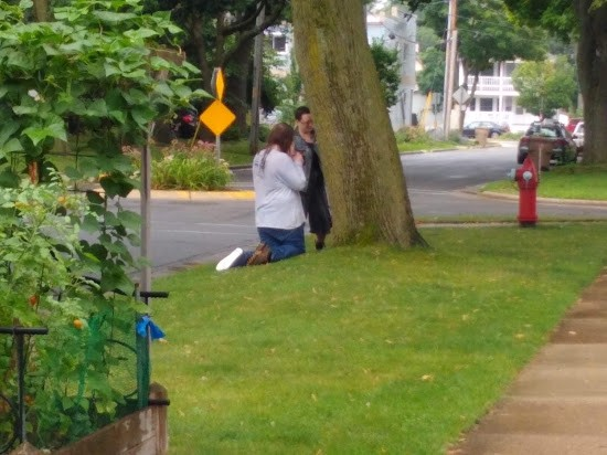 Two people in the distance next to a suburban city tree, one kneeling and one standing.
