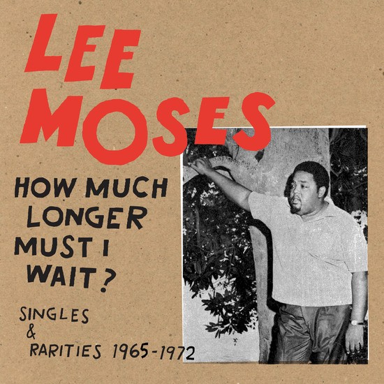 Cover of Lee Moses' How Much Longer Must I Wait