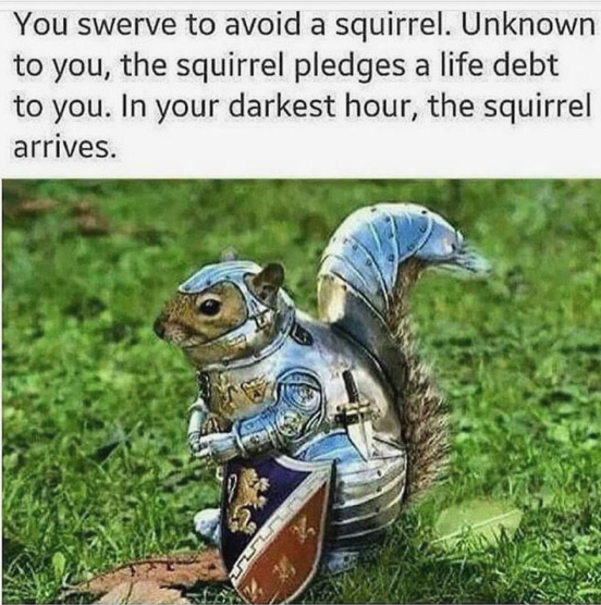 Squirrel Memes, and Other Ways to Get People to Care