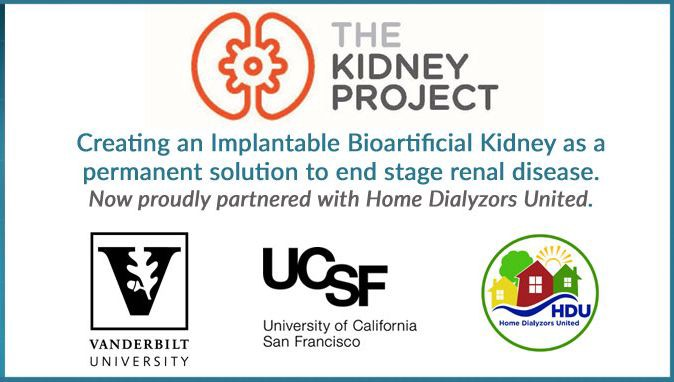 Progression of the Bioartificial Kidney - Wendy J - Medium