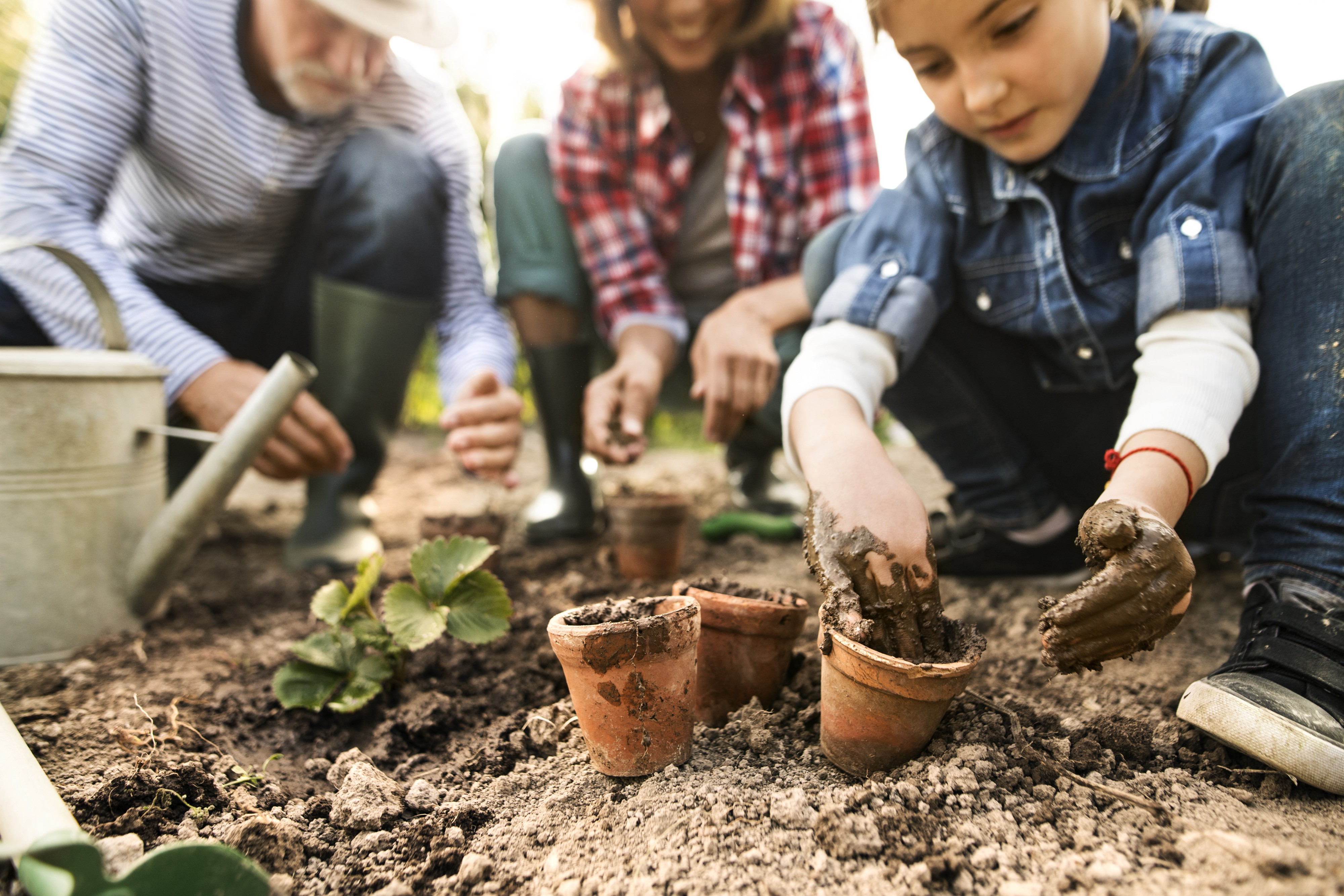 A child fills small terra cotta pots while adults tend to strawberry plants.