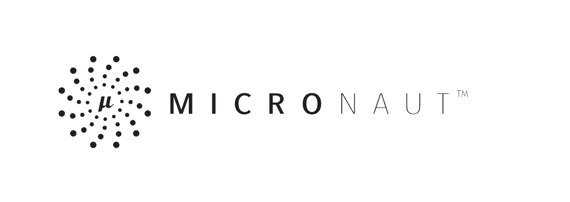 A Guide to Building a Micronaut Application With Micronaut Data Support