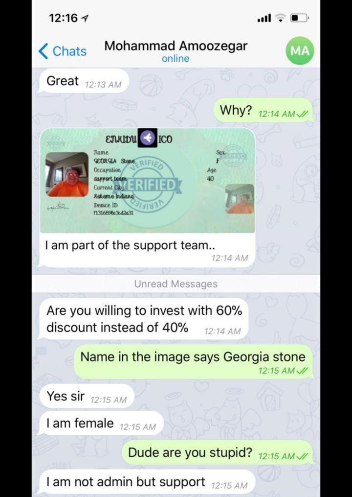 Who's Who? The life and times of a Telegram scammer