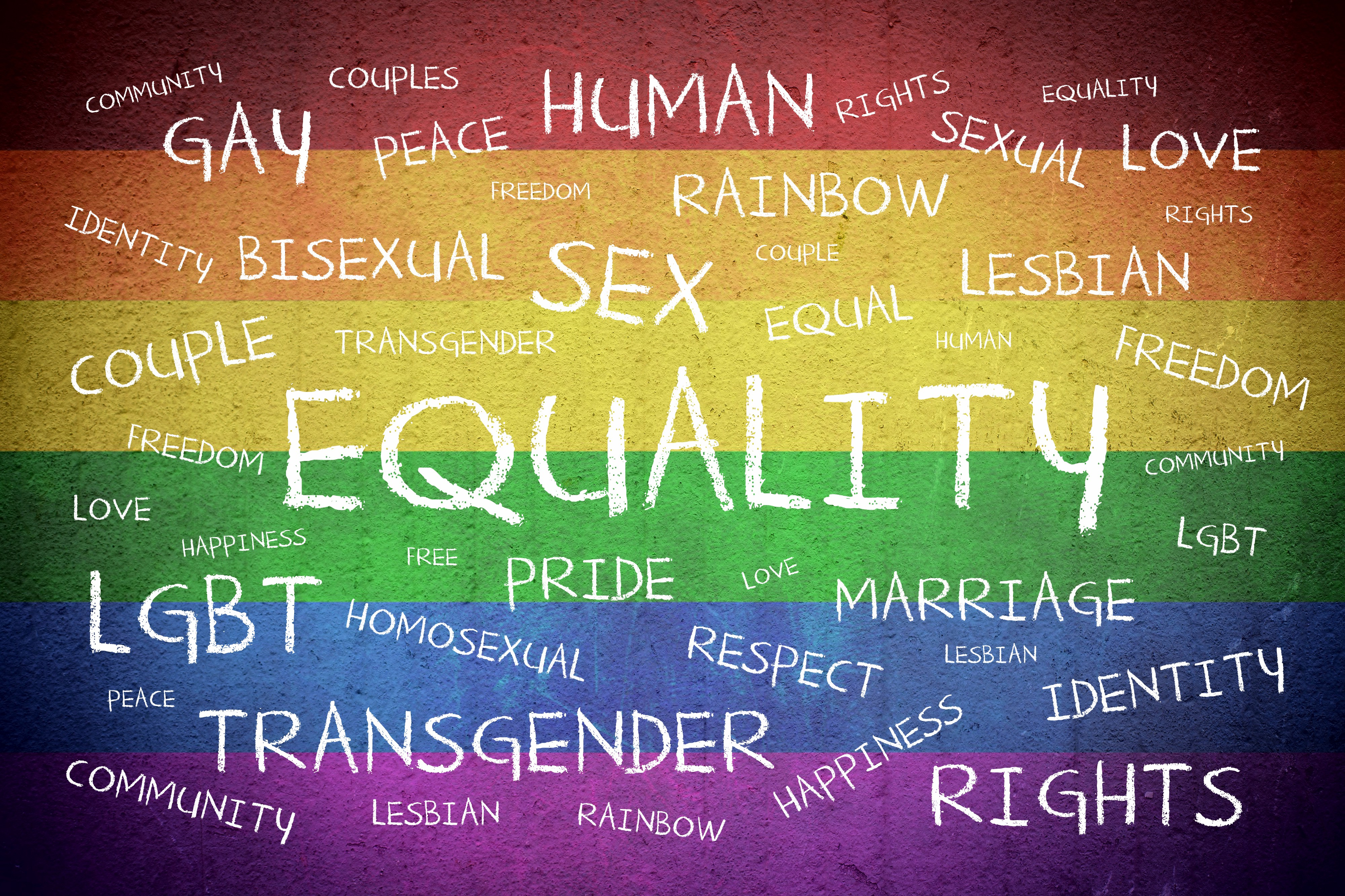 Word cloud with words related to sex, gender, and sexuality against the backdrop of a rainbow flag that is the LGBTQ flag.
