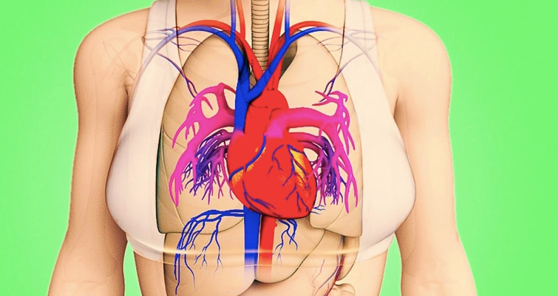 A Month Before a Heart Attack, Your Body Will Warn You With These 8 Signals