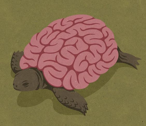 Conceptual illustration featuring a tortoise that is a brain.