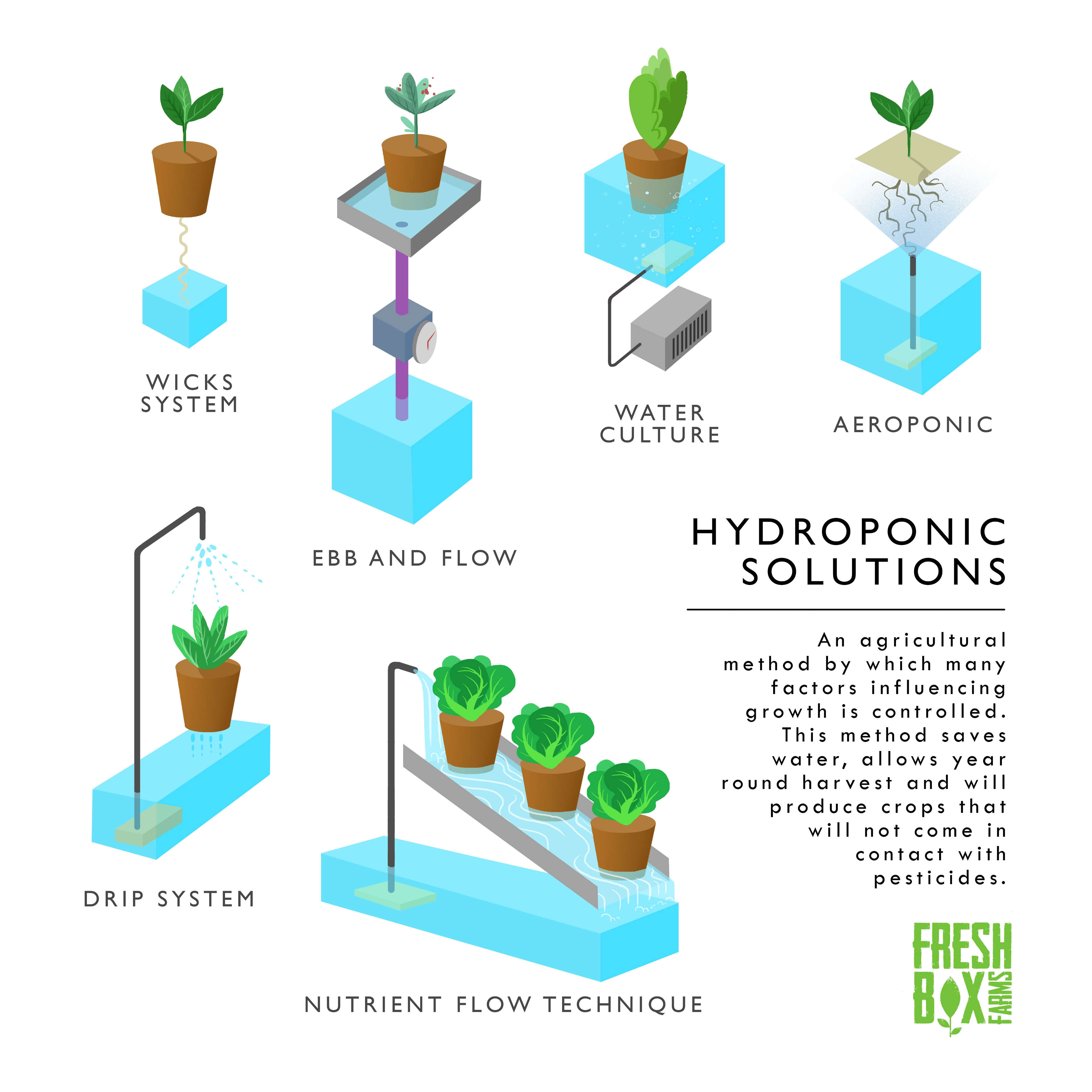 Controlled Environment Agriculture (CEA): More than Hydroponics