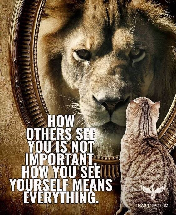 Image for post When you feel like quitting! When you feel like quitting! 1 xM bhq0nJTZMkvTZNqTsqQ