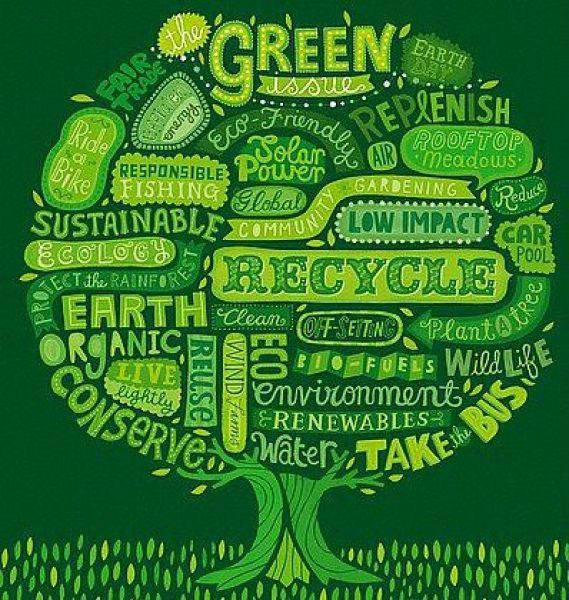 25 Easy Sustainability Tips To Green Your Office Tony