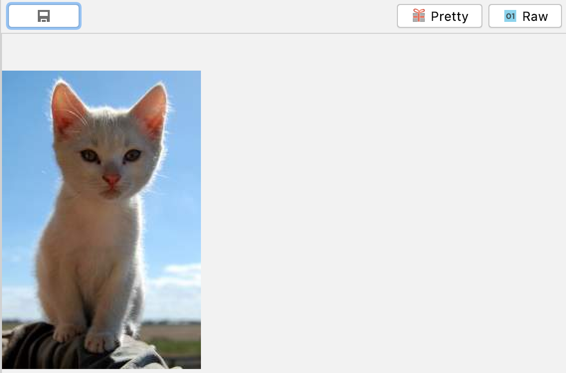 Screenshot of pretty view showing image of a cat