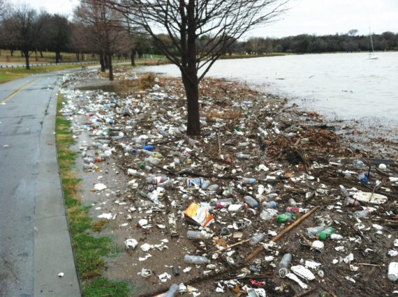 Not only does runoff of pesticides and herbicides, and dumping industrial and human waste affect White Rock Lake, but plastic, Styrofoam and other trash litters the shoreline.