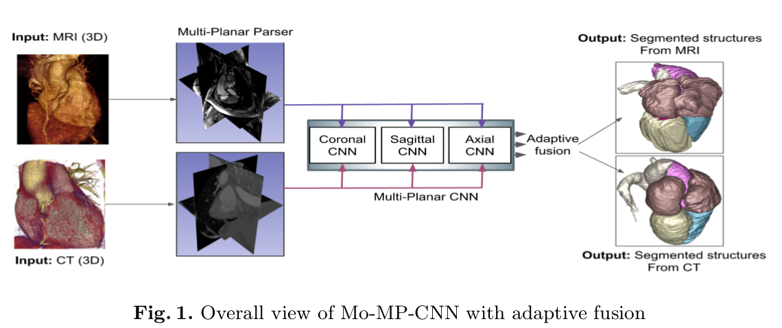 Medical image segmentation & deep learning — road towards