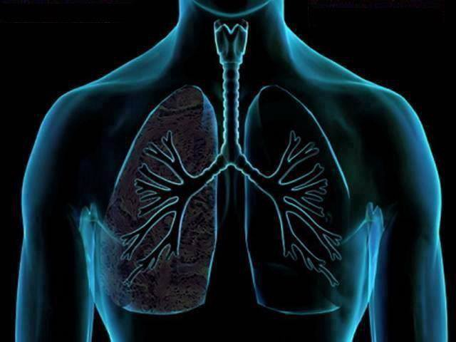 HOW TO CLEAN THE LUNGS IN 3 DAYS - Yoga from India - Medium