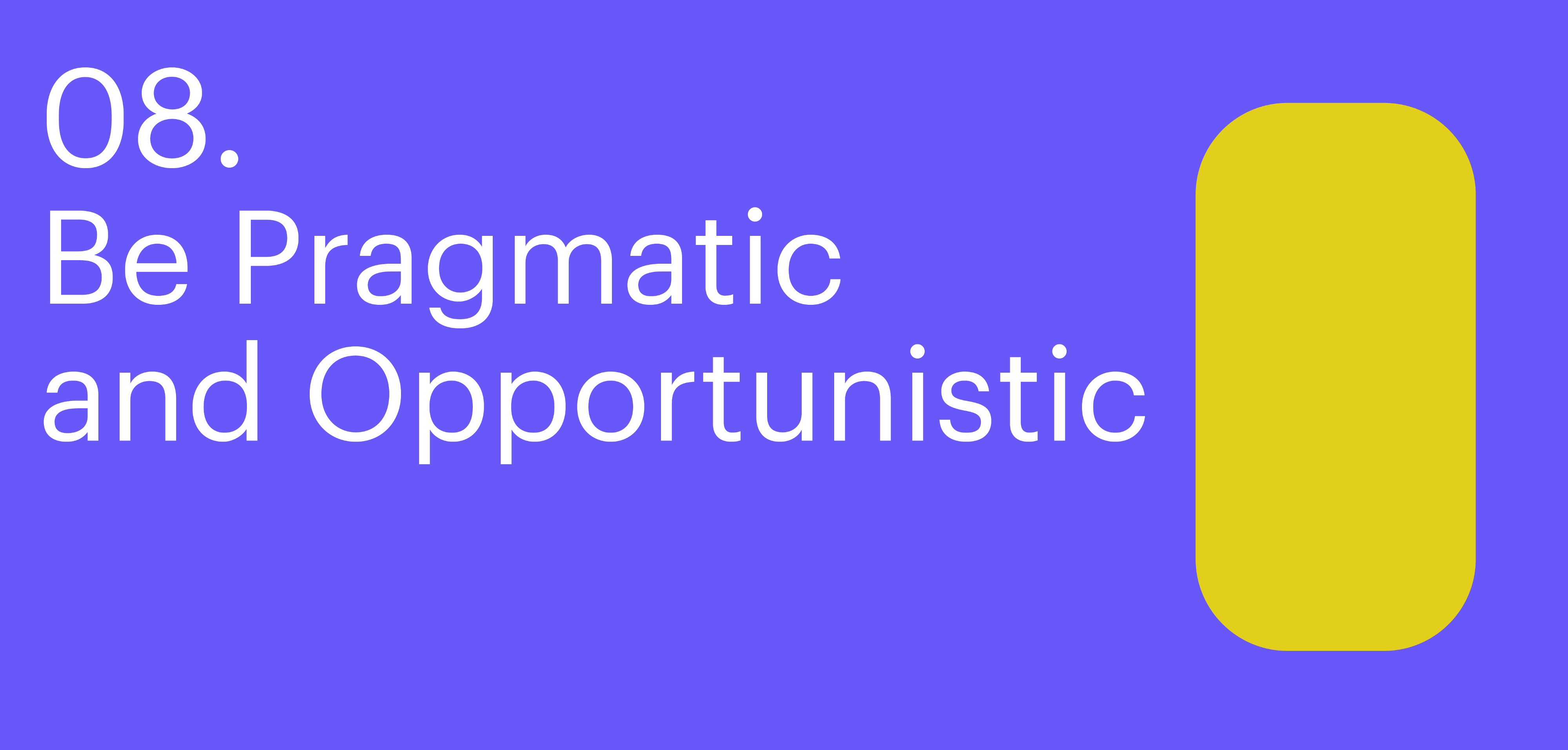 Principle eight. Be Pragmatic and Opportunistic