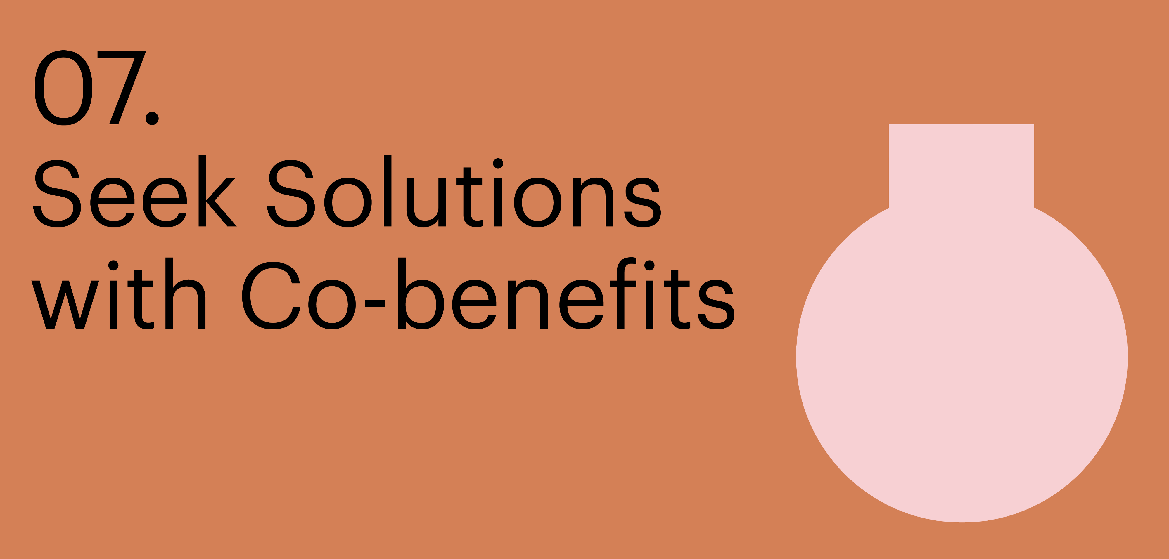 Principle seven. Seek solutions with Co-benefits