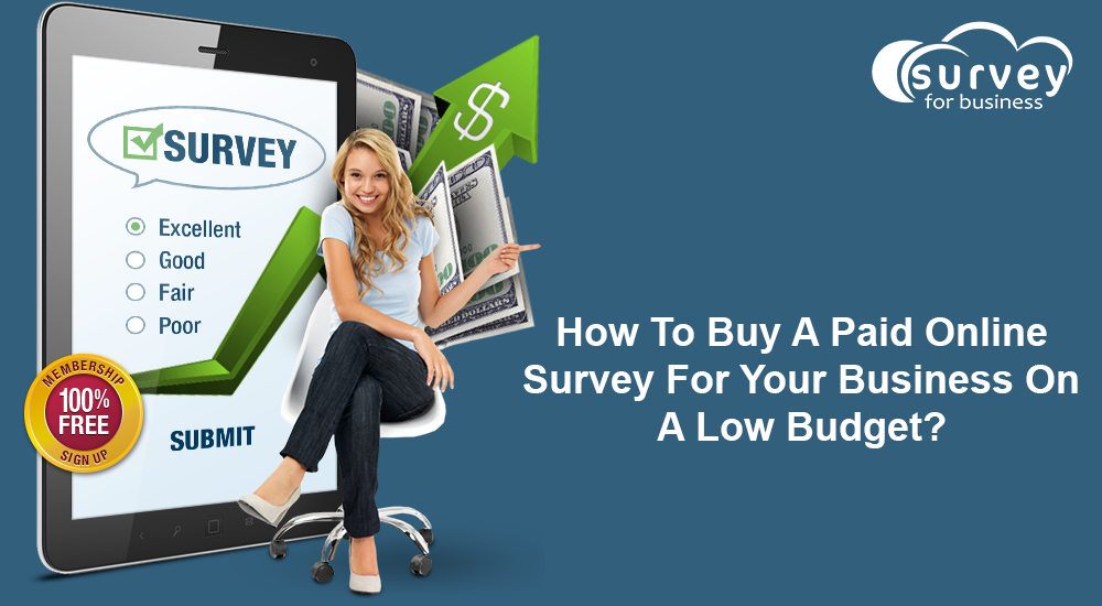 How to buy a paid online survey for your business on a low