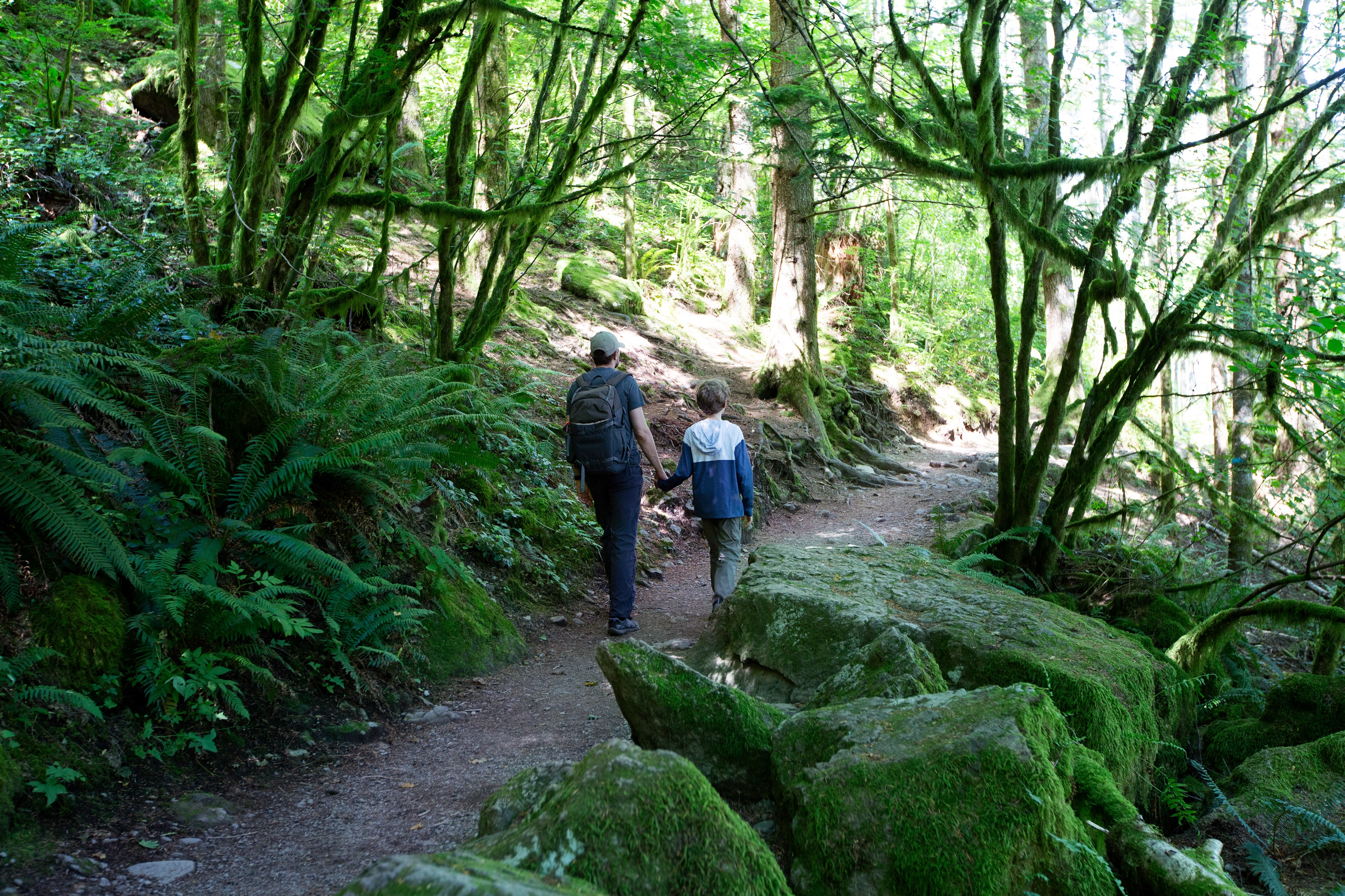 A family hiking a mossy trail.