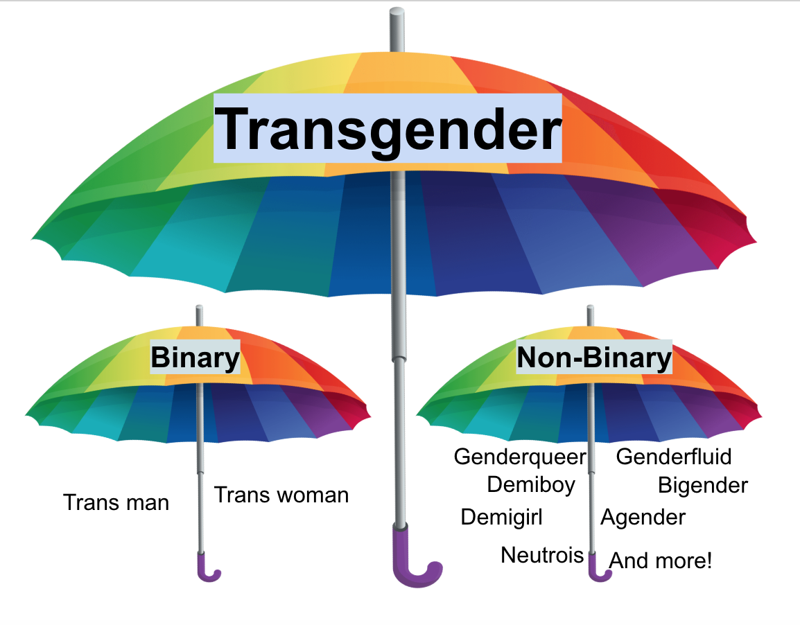 Trans People Need to Stick Together - G  Balend - Medium