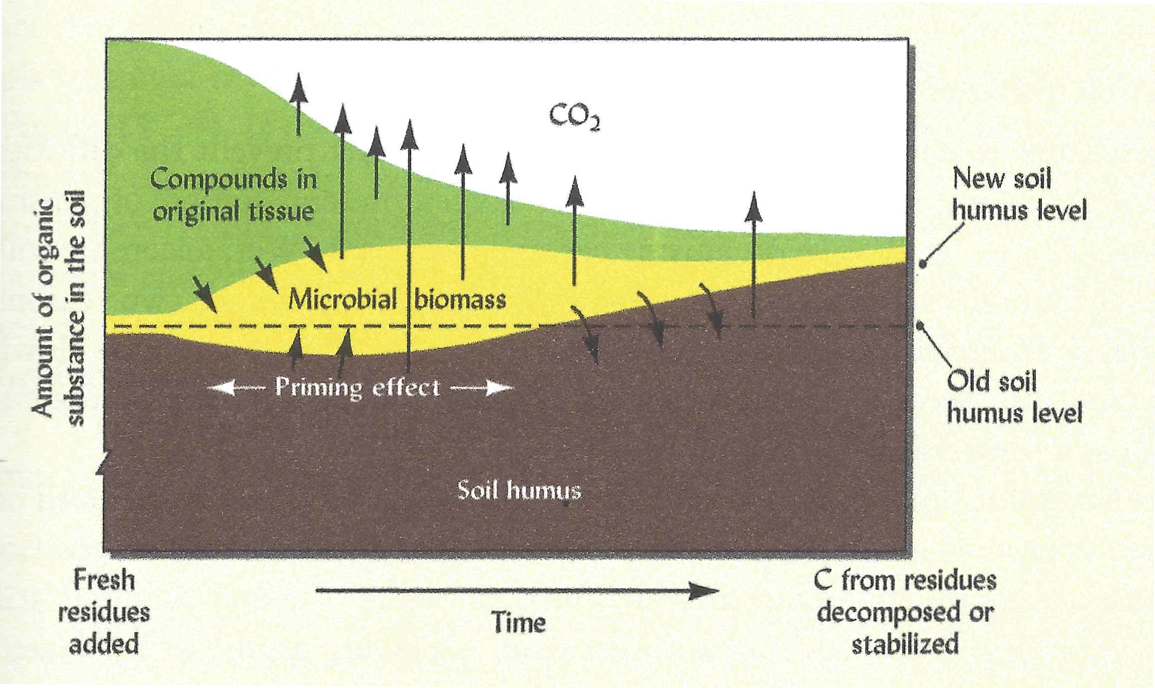 schematic illustration of the changes in soil carbon fractions