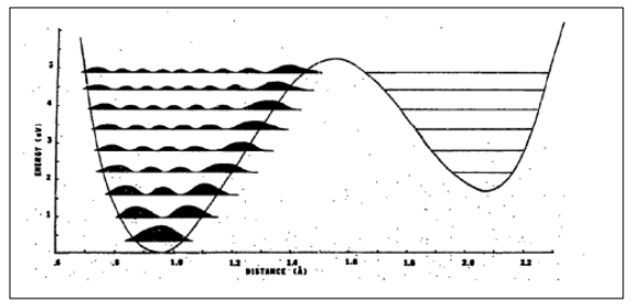 The proton distribution for the tautomeric base pair G-T.