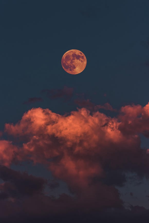 A blood moon hangs in the night sky, with red clouds begs the question: should we put a seed vault on the moon?