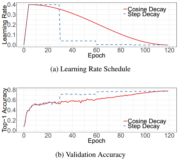 Bag of Tricks for Image Classification with Convolutional