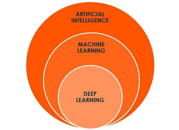 The Beginner's Guide to Understanding Artificial Intelligence