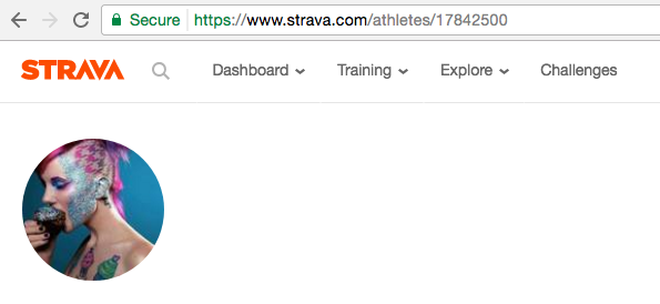 Getting Started With The Strava API: A Tutorial - Tilde Ann Thurium