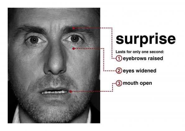 How to Detect Lies: Micro Expressions - Nick Babich - Medium