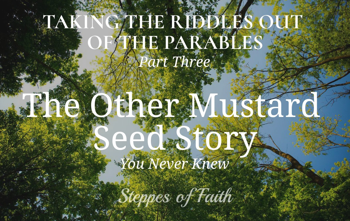 Taking the Riddles Out of the Parables Part 3: The Other
