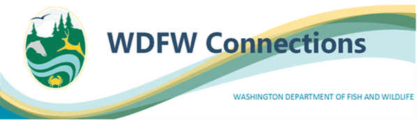 Graphic that has WDFW logo and titled WDFW Connections