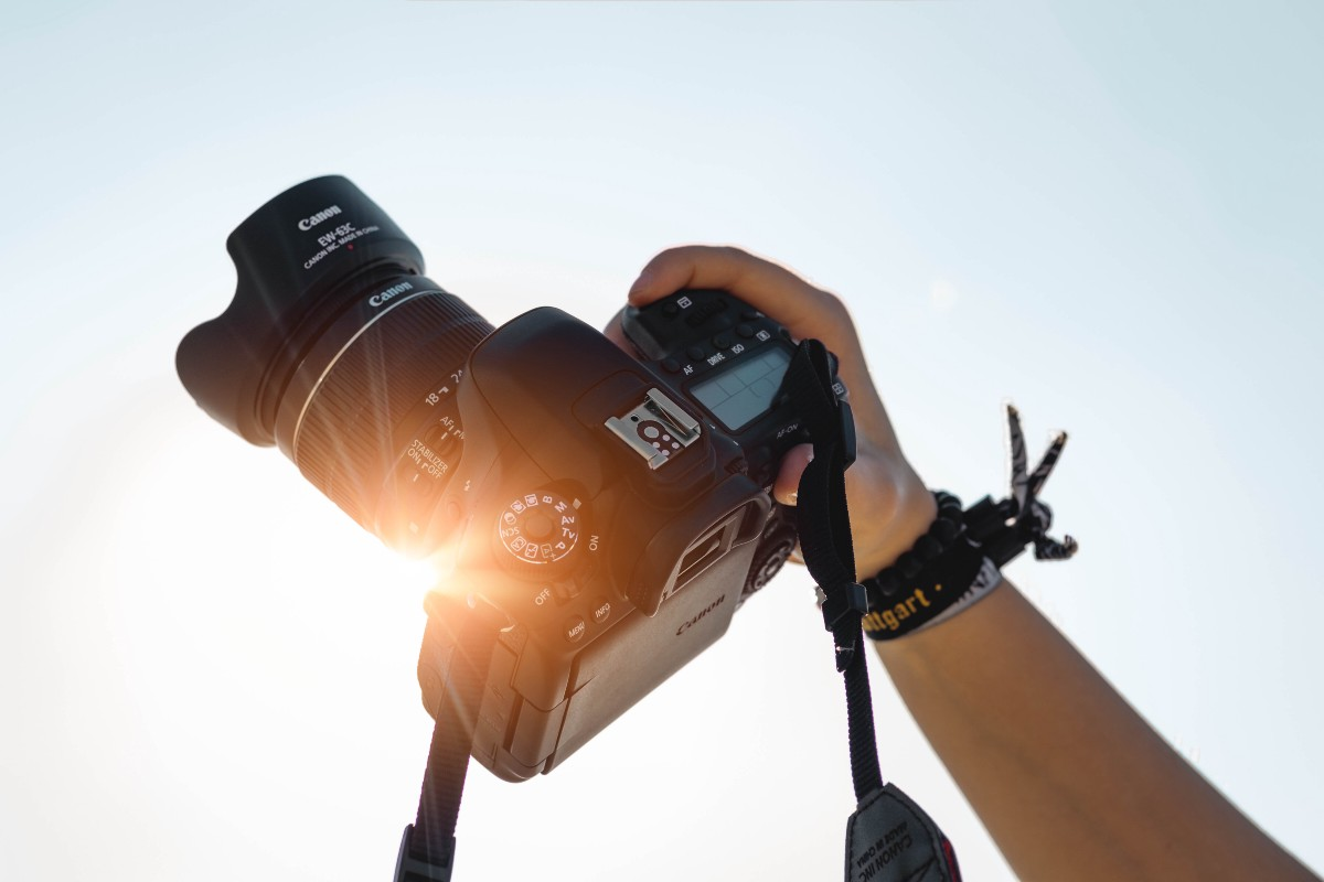 Understanding Camera Bodies and Lenses