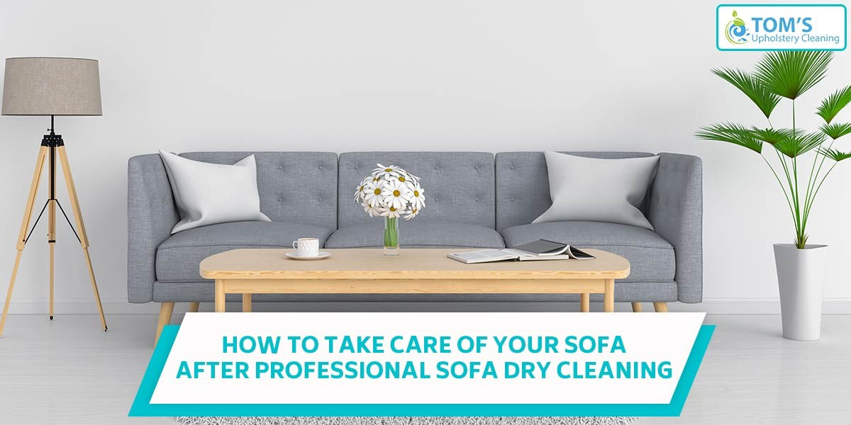 How To Take Care Of Your Sofa After Professional Dry