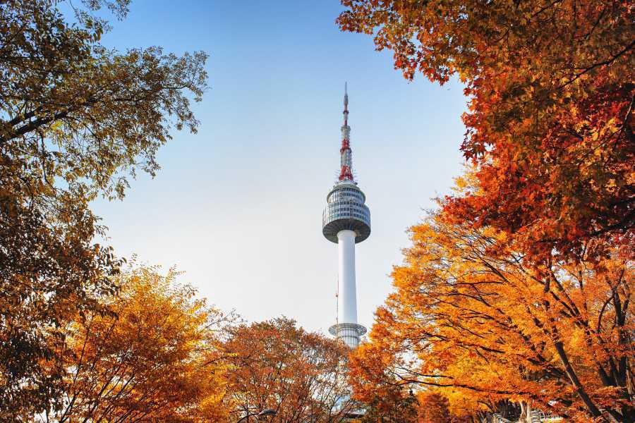 0ac2067eb37ca You may opt to hike or take a cable car to N Seoul Tower on top of the  mountain. Delight in panoramic views of Seoul, covered in rich fall colors  from plum ...